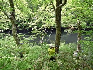 ロープを頼りに斜面を下り、日陰沼を目指す参加者。秘境巡りの中で最も人気のスポットで、最も難関の場所。水面は黒く沈んで見える=6日