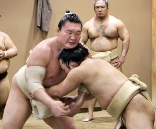 白鵬が相撲取る稽古を本格再開