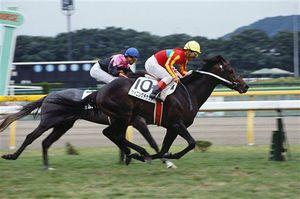 日本ダービーのゴール前、同期でライバルの岡部が騎乗するビワハヤヒデ(左)と激しく競り合う柴田騎乗のウイニングチケット=1993年5月、東京競馬場(JRA提供)