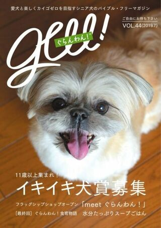 """広がる""""犬の介護""""問題、専門誌語る「シニア犬との愛ある生活」"""