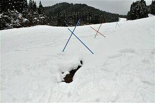 雪不足にやきもき 青森県内スキー大会関係者