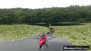 小川原湖湖沼群の一つ、小田内沼をカヤックで巡る木滝さん(手前)と清水さん
