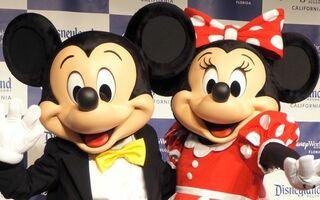 東京ディズニーランド&シー、年間パスポート所持者を対象に抽選入園を実施へ