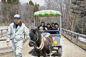 ポニーの馬車を楽しむ園児たち
