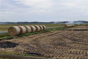 収集して有効利用される「稲わらロール」が並ぶ光景も見られる一方、右奥の田んぼでは稲わらを焼く煙も上がっている=25日午前、つがる市内