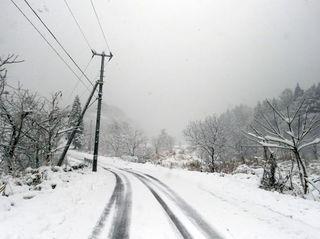 ✿一気に雪景色✿