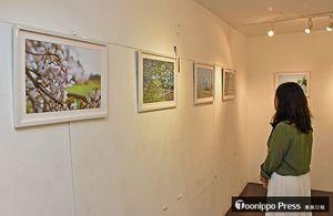 県内で撮影されたリンゴとサクラの花の写真展=東京・原宿