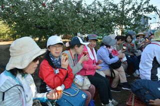 青い空、赤いリンゴ、幸せな収穫時間♡青森で作業体験イベント♪