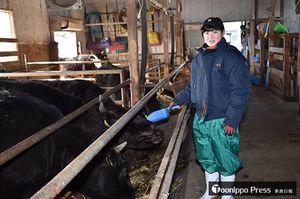 新規就農し、肉牛の繁殖事業に挑戦する荒谷さん=2月、七戸町の県営農大学校