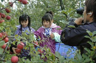 「りんご娘.」起用しリンゴ宣伝番組収録/つがる弘前農協