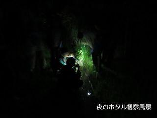 わくわく‼少年自然探検隊 2015・8/8…