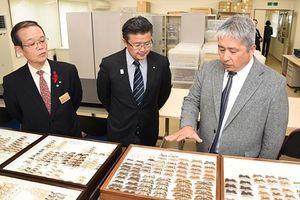 弘大白神自然環境研究センターの昆虫標本などを収蔵している白神自然観察園分室