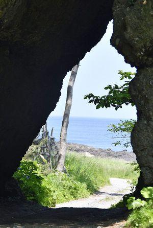 横を向いたトトロのような輪郭で、話題になっている岩穴=8日、六ケ所村泊
