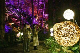 紅葉の十和田湖畔、光の演出/フェスタ開幕