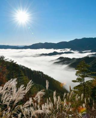 冷え込み強く幻想的な雲海、奈良