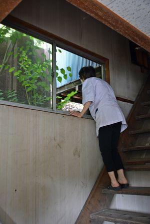 クマに割られた窓から逃走方向を見つめる食堂経営者の女性=17日午後