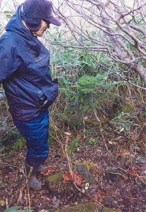 岩木山8合目付近にあるアオモリトドマツの幼樹を確認する「岩木山を考える会」のメンバー(同会提供)