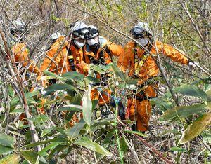 やぶをかき分けて遭難者に見立てた人形を乗せた担架を運ぶ消防署員たち