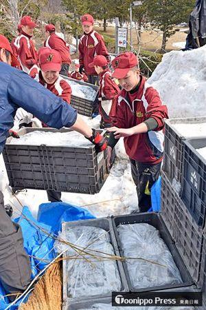 雪室からリンゴを運び出す浪岡中の生徒ら