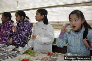 焼きたてのアスパラガスを試食した児童たち