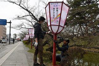 弘前公園でぼんぼり設置始まる