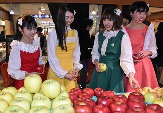 リンゴ、地場産品PR 青森で市町村まつり