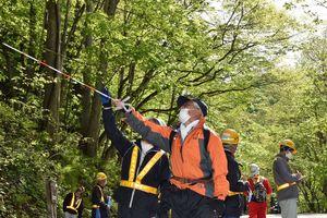 奥入瀬渓流沿いの国道102号で樹木の安全点検をする関係者=12日、石ケ戸休憩所付近