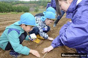 「宇宙毛豆」の種を植え付ける五農の生徒と園児たち