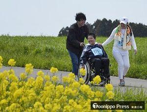 満開の菜の花を見ながら車いすで走る龍弥君(中)と母親の美和子さん(右)、担任の下總さん