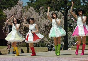 多田さん作詞作曲の「RINGOSTAR」発表直後、満開の桜をバックに同曲を披露するりんご娘。グループが4人になって初のシングルは大きな転機の一曲となった=2017年5月3日、弘前公園市民広場