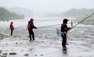相模川でアユ釣り解禁、神奈川