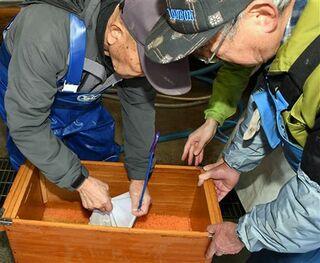 サケ漁獲回復で連携、受精卵引き渡し/八戸