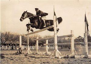 1955年ごろに馬事公苑で撮影されたとみられる富士号(アバロン・ヒルサイドファーム提供)
