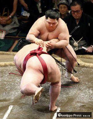 十両優勝争いをかけた一番で、阿武咲(上)が剣翔をはたき込みで破る