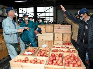 弘前、板柳でリンゴ止め市/平年並みの取引