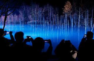 「青い池」ライトアップ始まる