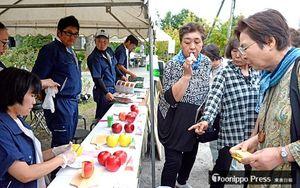 りんご研究所参観デーでさまざまな品種のリンゴを試食する来場者ら