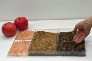 独自技術で乾燥させたリンゴの搾りかす(中央)から作られたバイオプラスチック用原材料(右)