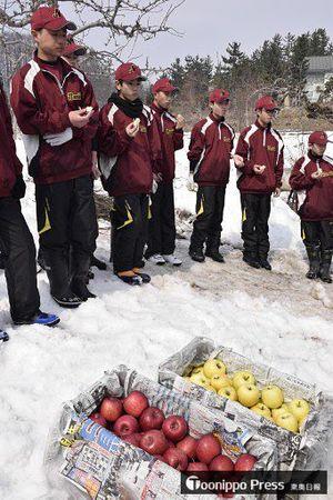 雪室で貯蔵されたリンゴを試食する浪岡中の生徒