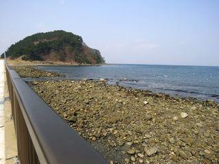 ✿〜大島へ
