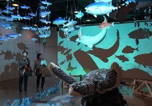 はっちの「山車飾り水族館」では、実際に使われた亀や魚などの飾りが持つリアルな造形を間近で楽しめる