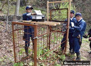 ニホンジカ捕獲に向けて設置したわなを確認する東北森林管理局の職員たち=深浦町