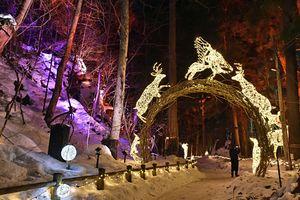 十和田神社の参道と湖畔を電飾で彩る「光の冬物語」