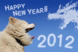 Say Hello 2012