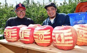 平川市の若手リンゴ農家が栽培しているラグビー日本代表のジャージー柄のリンゴ=平川市新館地区