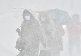 青森県内各地で強風雪 交通の乱れ相次ぐ
