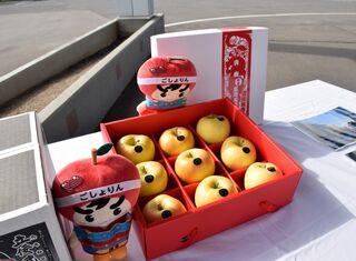 黄色リンゴ「トキ」3千個、台湾へ輸出