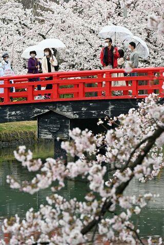 青森県内各地で「密」避け花見