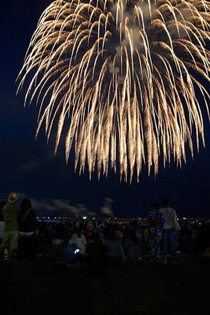約5千発の花火が夜空を彩った八戸花火大会=19日午後7時23分、八戸市の館鼻岸壁