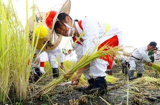 猿賀神社で「苅穂祭」古式ゆかしく収穫の喜び